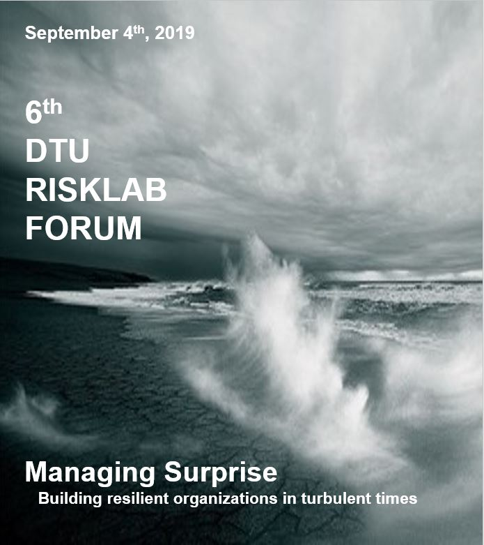 Managing Surprise Building resilient organizations in turbulent times 6th DTU RISKLAB FORUM